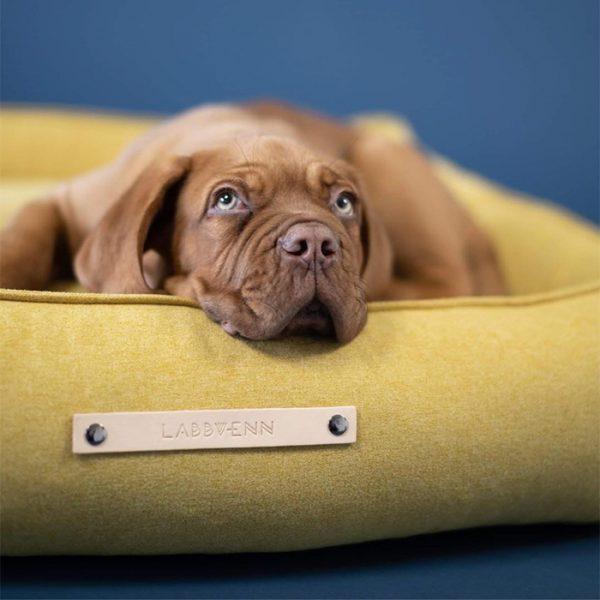 luxe hondenmand geel