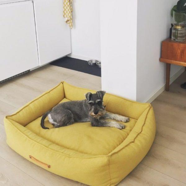 mooie hondenmand geel