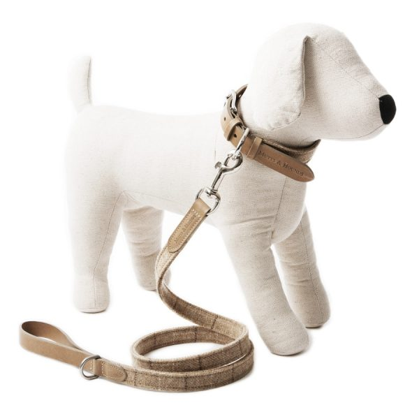 Stijlvolle Beige Leren Hondenhalsband