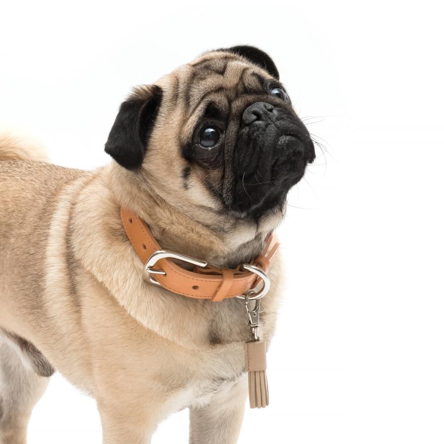Trendy Beige tassel clip van Mutts & hounds
