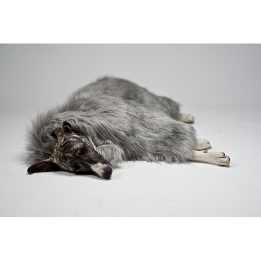 Zilver Hondendeken Fora_Labbvenn_3