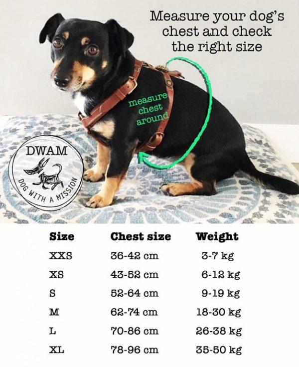 Maattabel Hondentuig DWAM