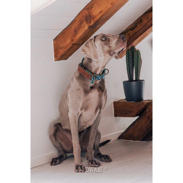 Blauwe hondenhalsband Boho Juan