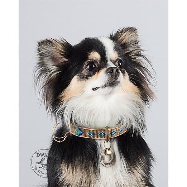 Stijlvolle leren hondenhalsband Indo Moon Chihuahua