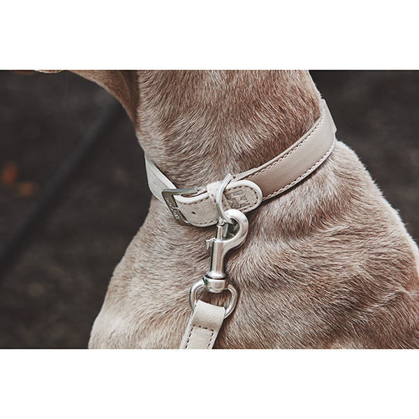 Beige Suède hondenhalsband MiaCara