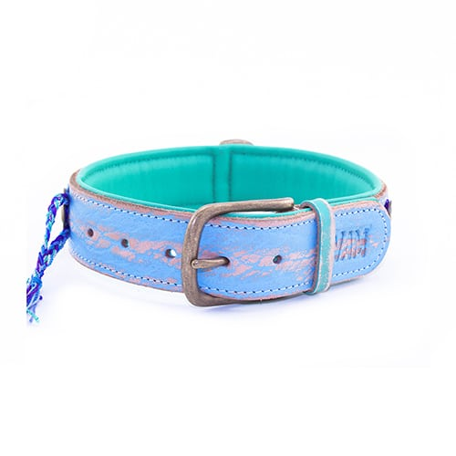 Dog with a mission halsband blue-4cm