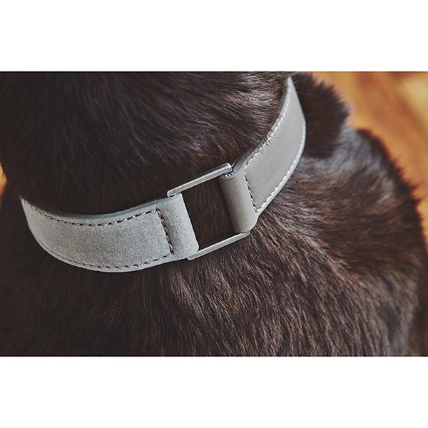 Grijze Suède hondenhalsband modern