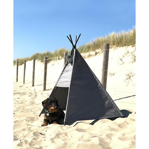 Honden tipitent Dogahaves – strand outdoor