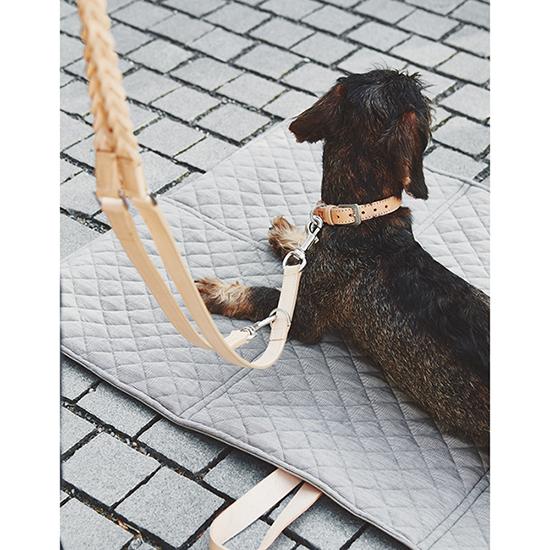 Leren hondenriem Bergamo teckel