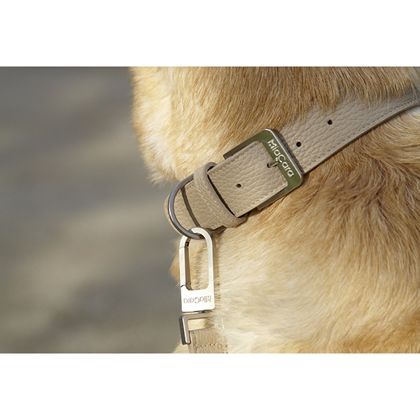 Moderne leren hondenhalsband Sand MiaCara