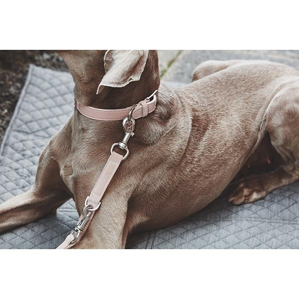 Roze Suède hondenhalsband MiaCara