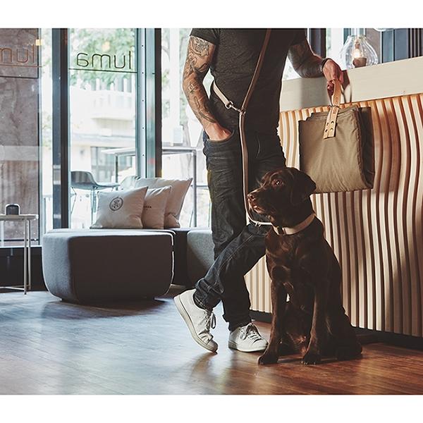 Stoere Suède hondenhalsband Como beige