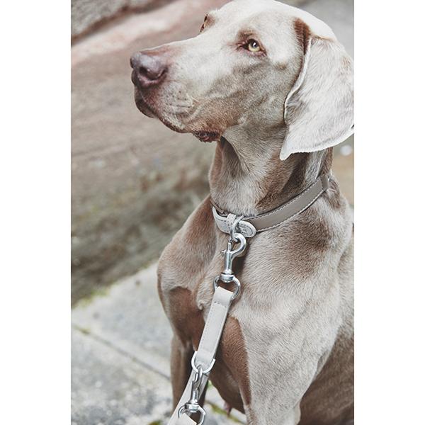 Suède hondenhalsband met leer beige