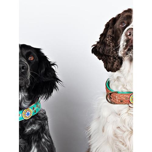 Hondenhalsbanden leer ibiza stijl
