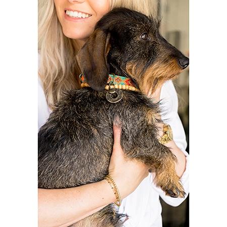 Mooie hondenhalsband Paddy lee