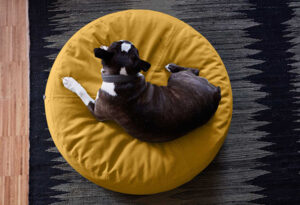 Gele hondenpoef retro vintage woonstijl