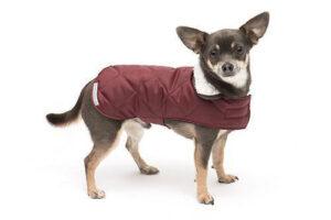 mooie hondenkleding hondenjas Dogahaves