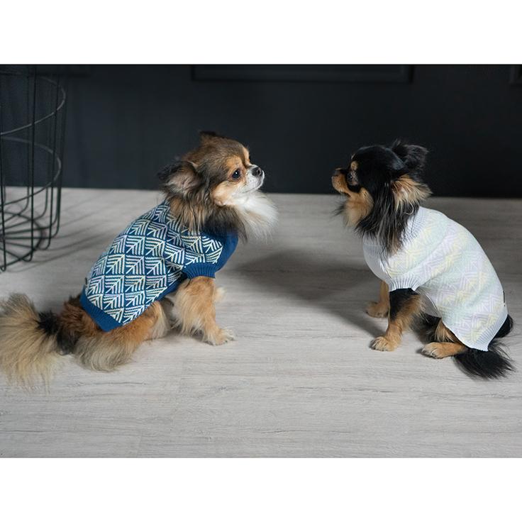 Chihuahua hondentrui Pullo Labbvenn sweater Dogahaves