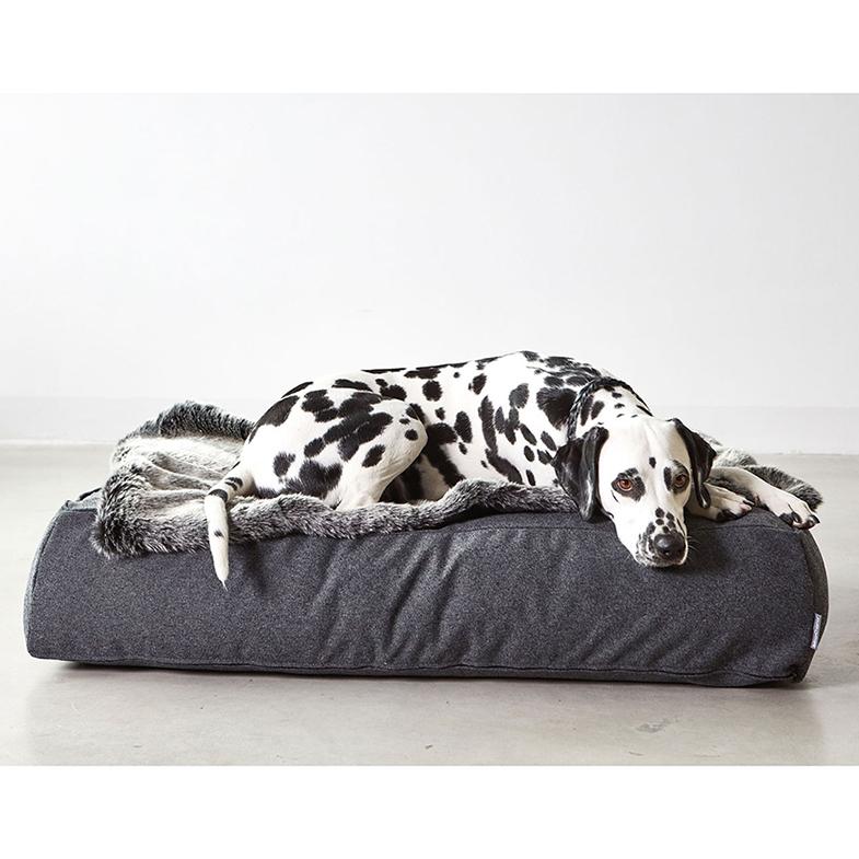Honden loungekussen antraciet dalmatier dogahaves miacara