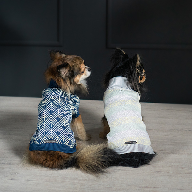 Pullo hondensweater Dogahaves Labbvenn chihuahua