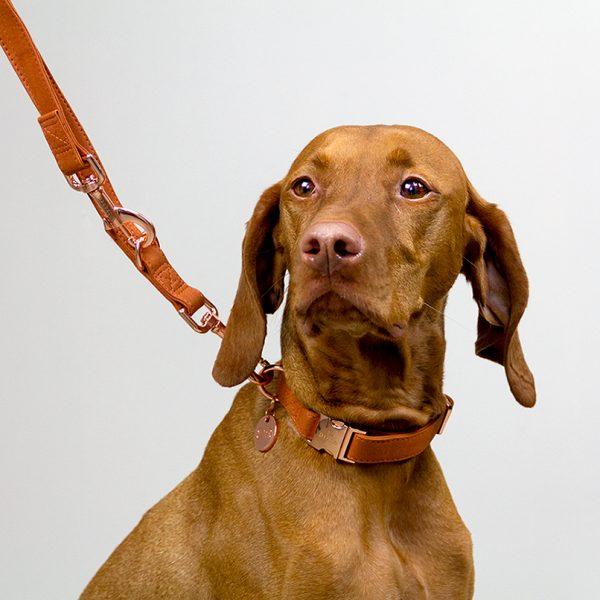 Hondenhalsband bruin cognac DOGA dogahaves