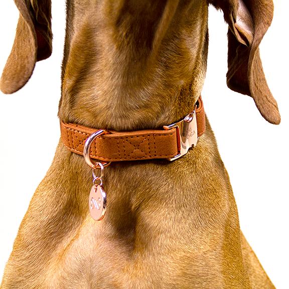 Hondenpenning rosegoud hondenhalsband cognac goud