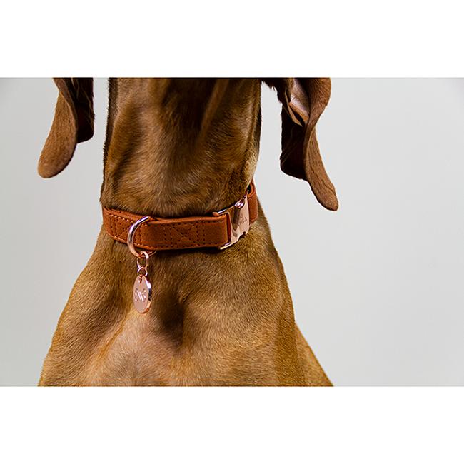 Mooie hondenhalsband rose goud DOGA