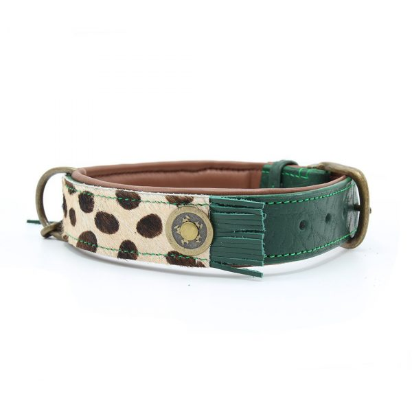 Ivy 4 cm dog with a mission leer hondenhalsband