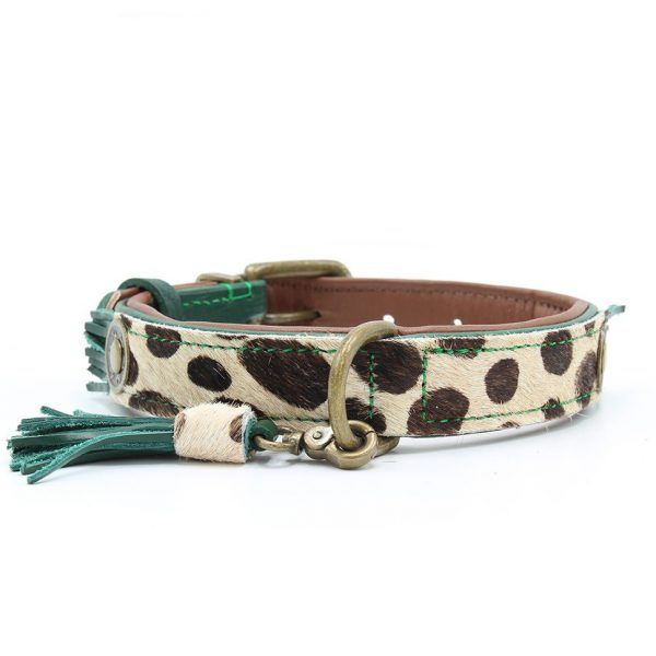 dogahaves Hondenhalsband Ivy 2,5 cm Dog with a mission