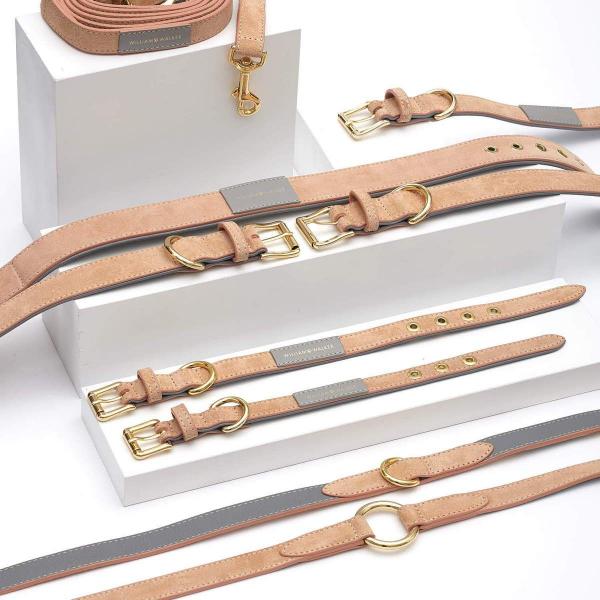 Leren hondenhalsband van suede met goud