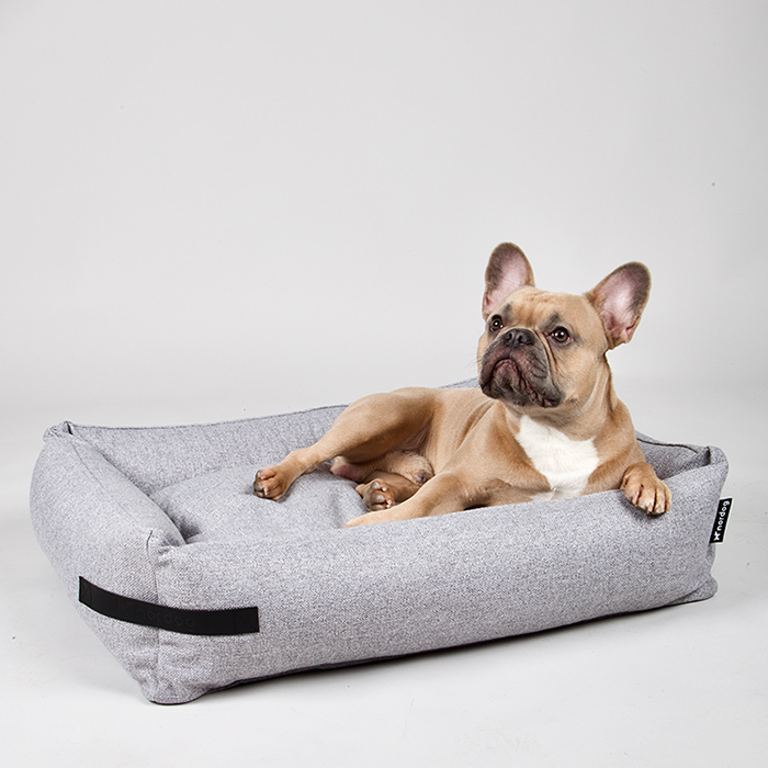 Orthopedishe hondenmand franse bulldog